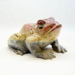 Žába střední