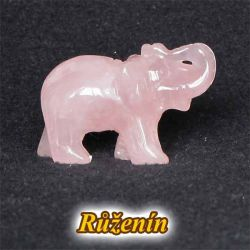 Slon - růženín