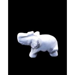 Slon - sodalit